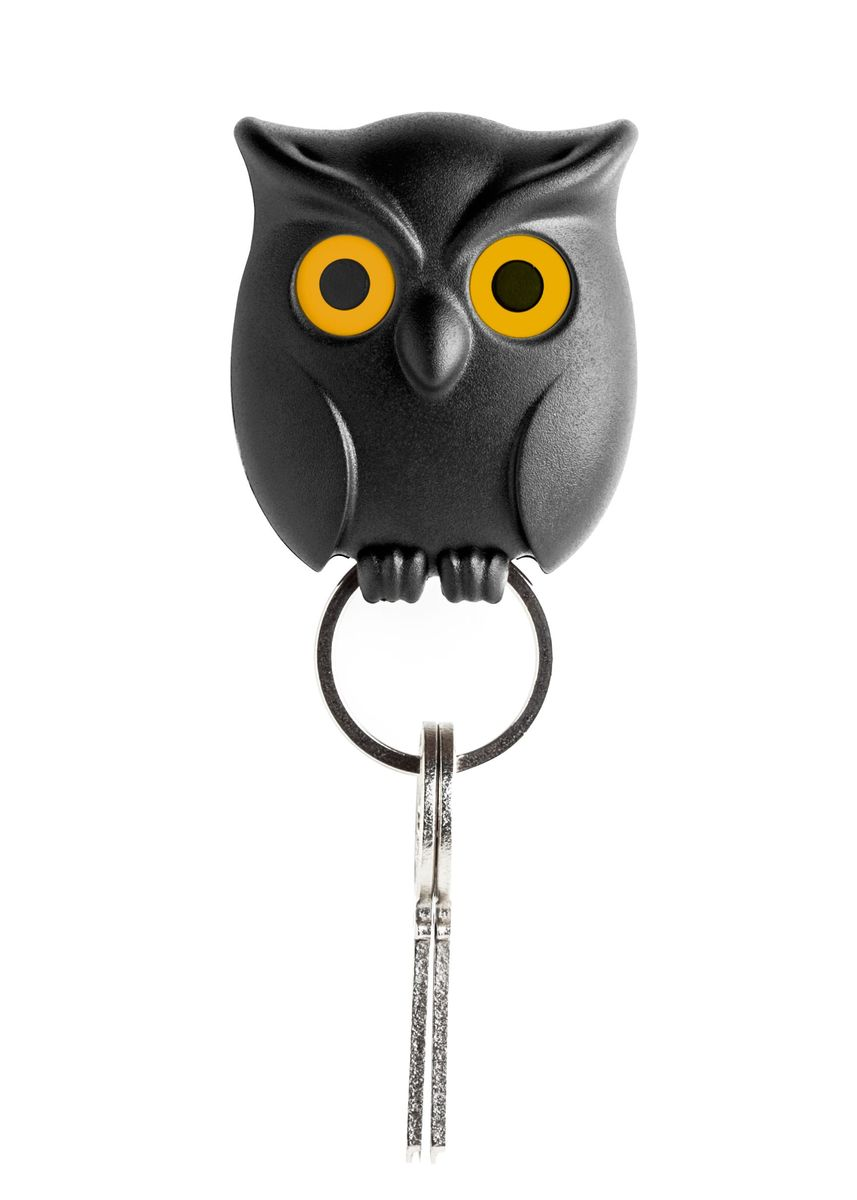 Black color Other . Night Owl Key Holder -