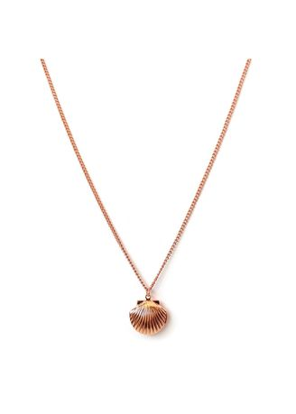Pink color  . Charov Shell Locket Necklace -