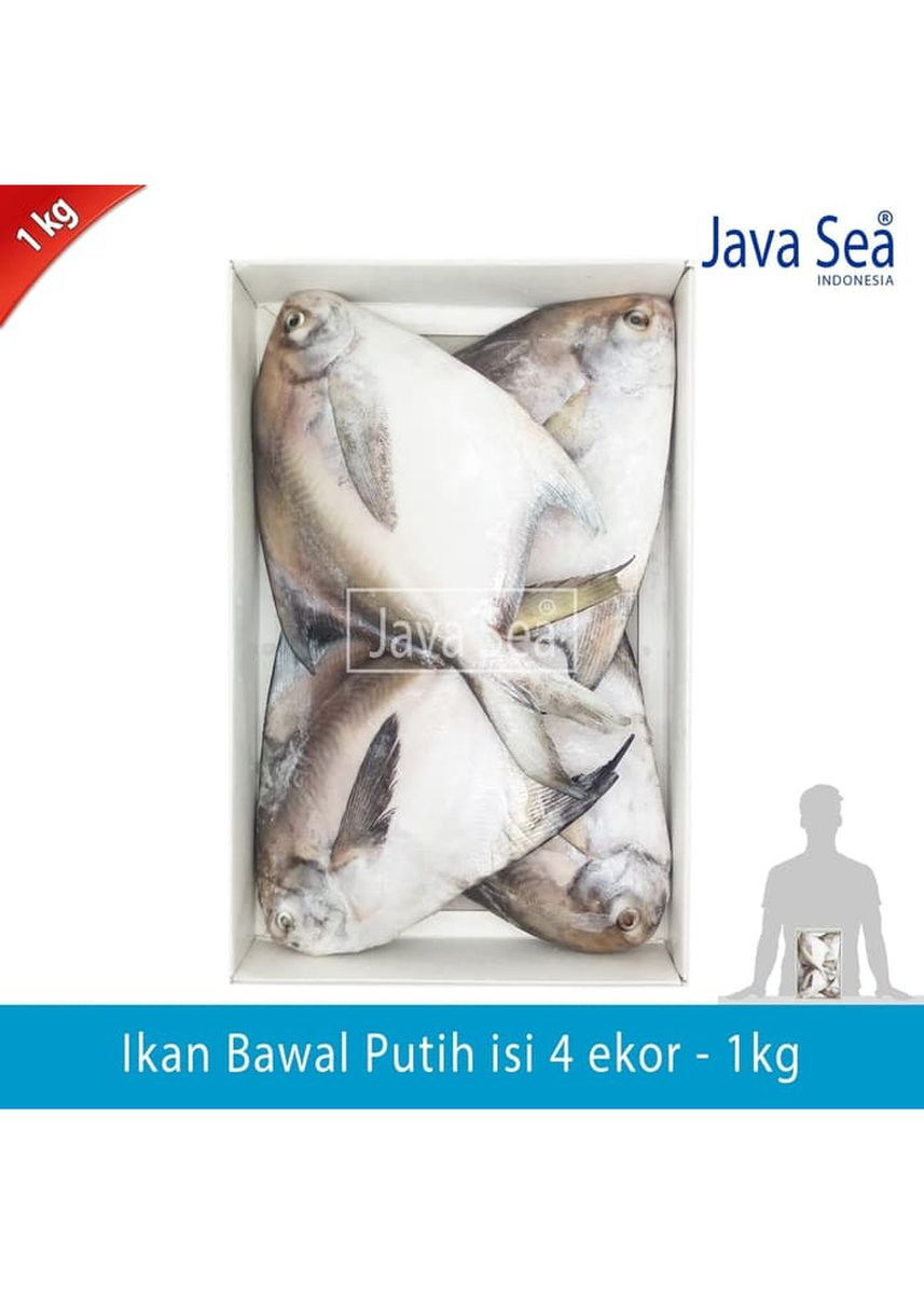 No Color color Canned Food . JAVA SEA Ikan Bawal Putih Beku Utuh isi 4 ekor per pack 1kg -