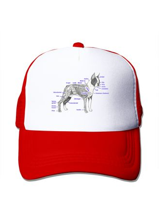 Red color  . Know A Boston Terrier Mesh Trucker Caps - Red -