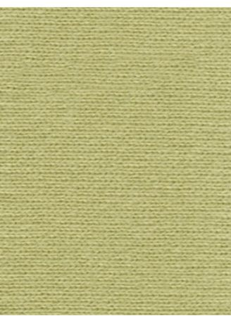 Green color Jersey . FOOD TEXTILE 30/2 JERSEY -